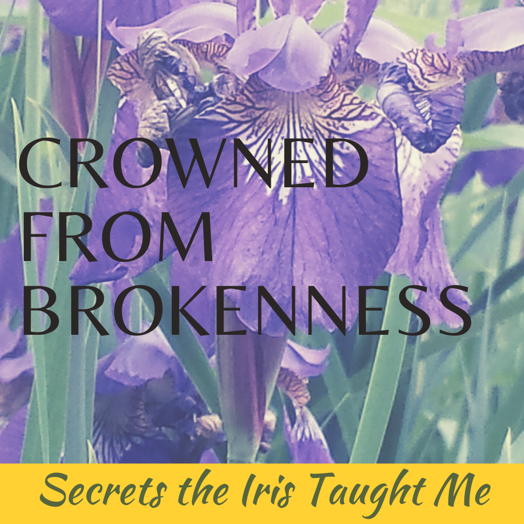 Crowned from Brokenness: Secrets the Iris Taught Me